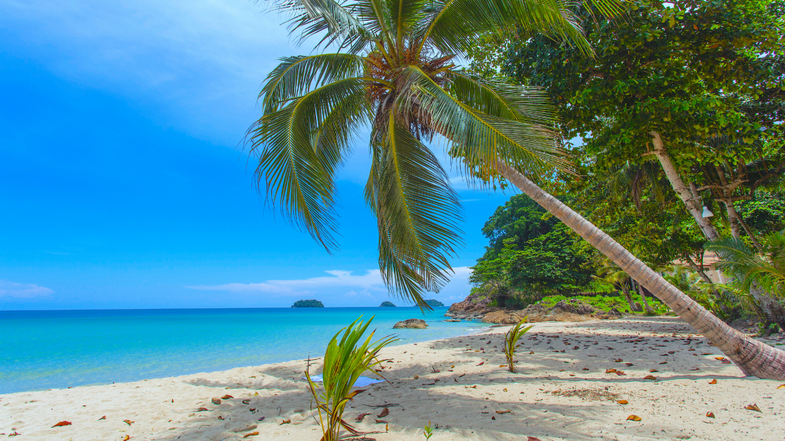 The Best Things To Do In Koh Chang